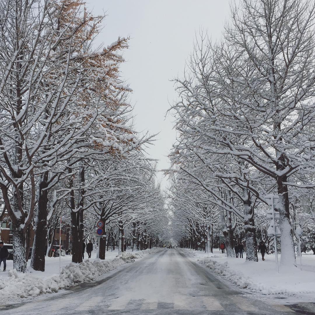 HU Winter